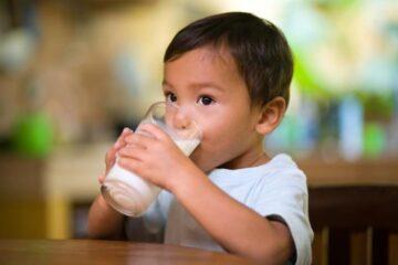 Berlangganan susu s26